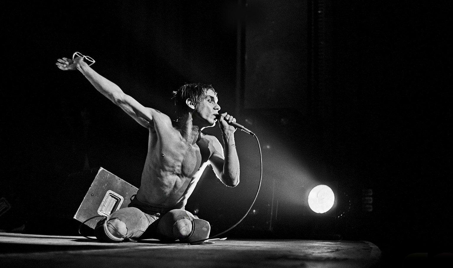 iggy pop i 70 anni dell'iguana del rock