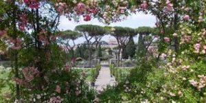 mam-e mostra LUXUS. LO STUPORE DELLA BELLEZZA - LA MOSTRA giardini
