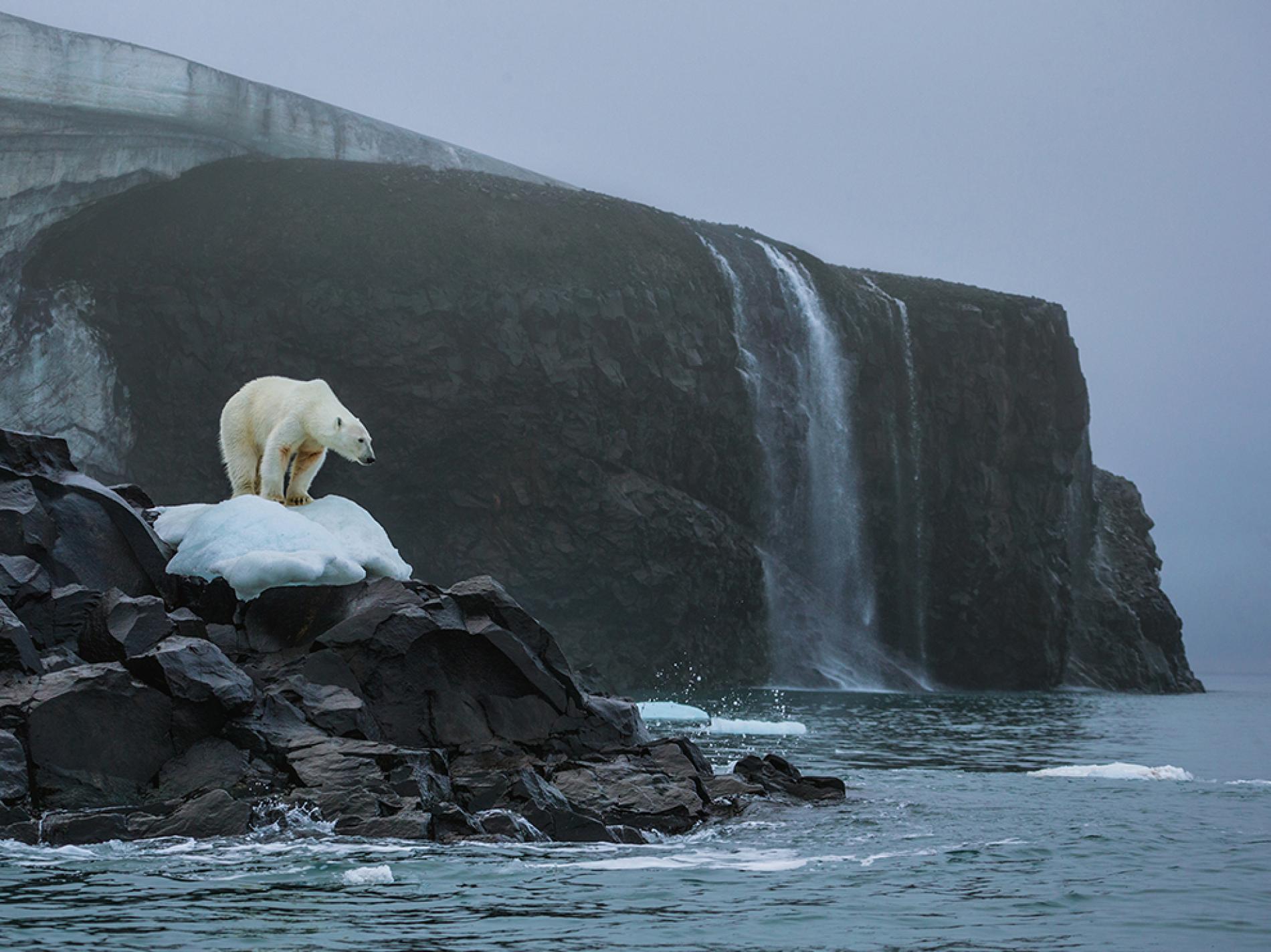 Capire il cambiamento climatico in mostra a Milano: gli scatti del National Geographic